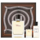 Hermès Terre D'Hermès Eau de Toilette 100 ml Gift ..